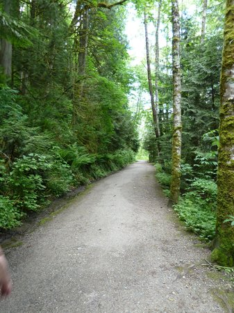 Lake Padden Park: Trail around the lake