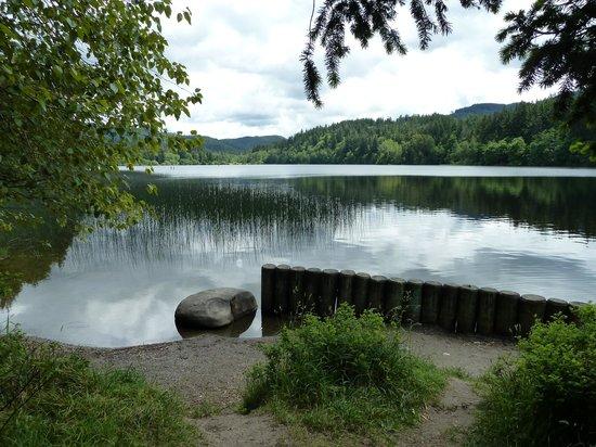 Lake Padden Park: Lake Padden