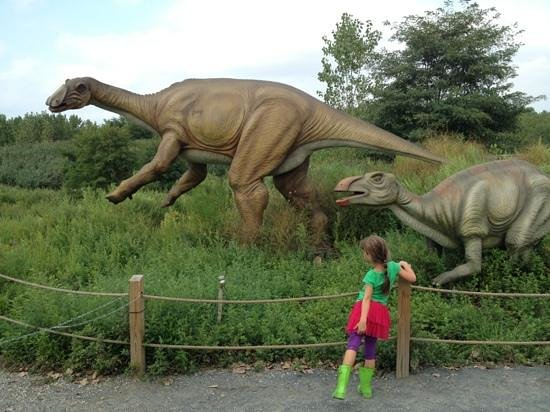 Field Station: Dinosaurs: so big!