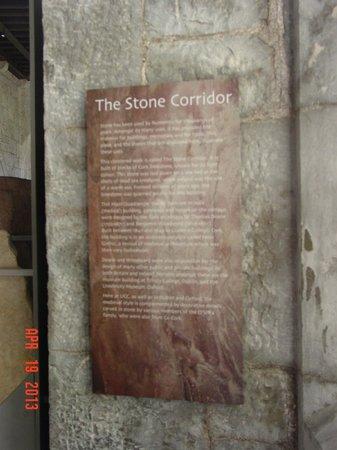 University College Cork (UCC) : Historic stones