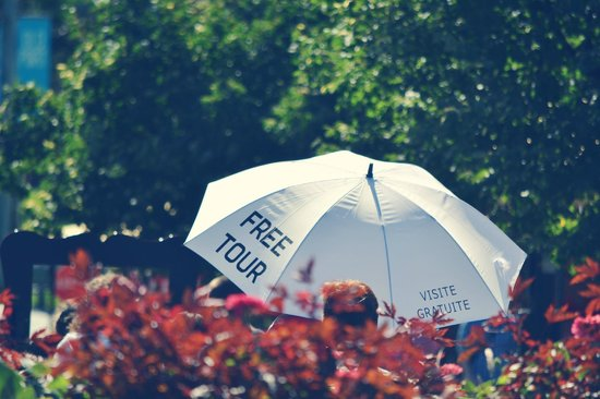 Free Old Montreal Tours : The umbrella in nature!