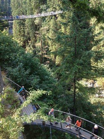 North Vancouver, Canada: Capilano Suspension Bridge and Cliffwalk