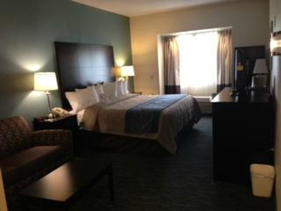 Comfort Inn Mount Airy : King Bed Room