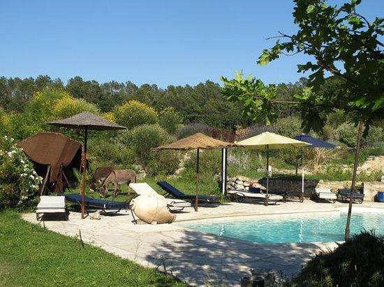 Bollene, Frankrike: piscine naturiste