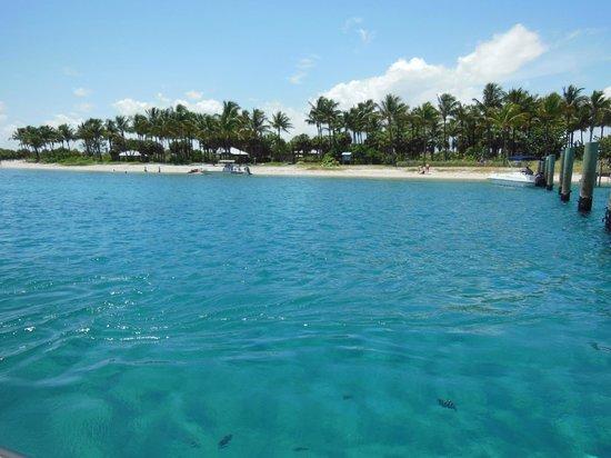 Water Taxi To Peanut Island Florida