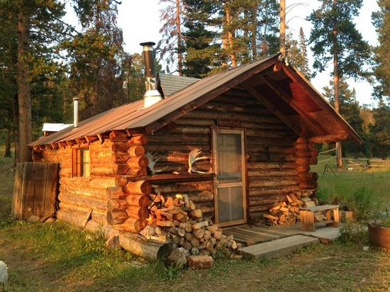 Crevice Mountain Lodge: Cabin