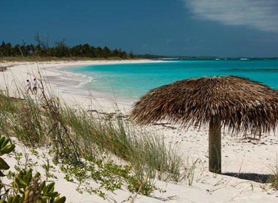 Pineapple Fields Resort: Tippy's Beachfront