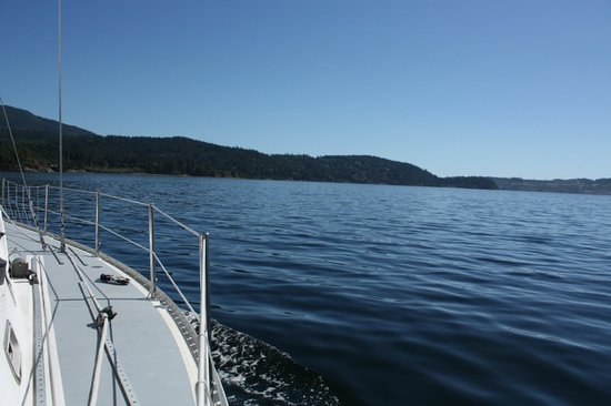 Sechelt, Canadá: Perfect day with Captain Steve