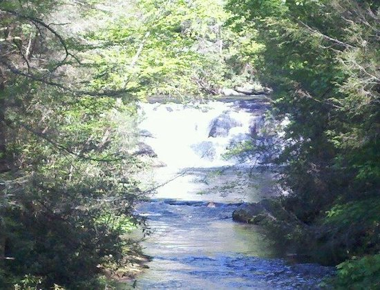 Cartecay River Experience: water fall