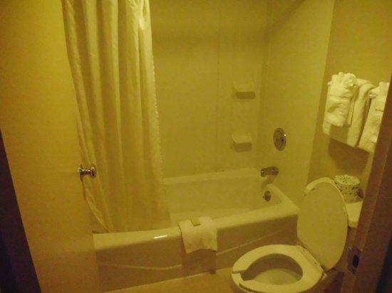 Governor's Inn - Colonial Williamsburg: bathroom