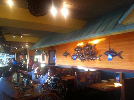 Jimmy's Fish House & Iguana Bar: Indoors