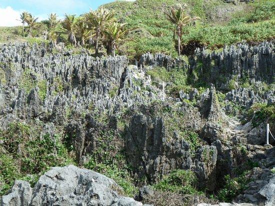 Togo chasm: Sharp pinnacles