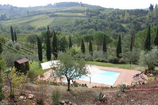 B&B Fagiolari: authentic Tuscan view.......wow!!!