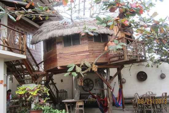 Hostal The Sea Garden House: View of the tree house