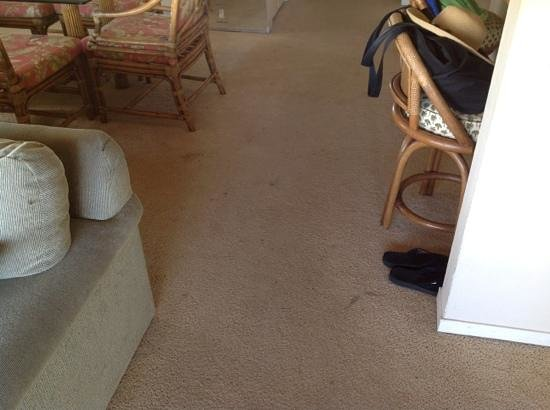 Wailea Elua Village: sample carpet stains