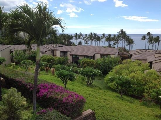 Wailea Elua Village: one more pic of the view from lanai.