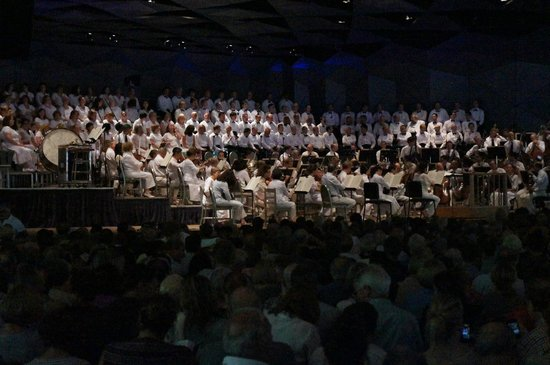 Tanglewood: View from the shed