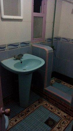 Hotel Belle Vue Zillis: bagno nr. 2 con blatta
