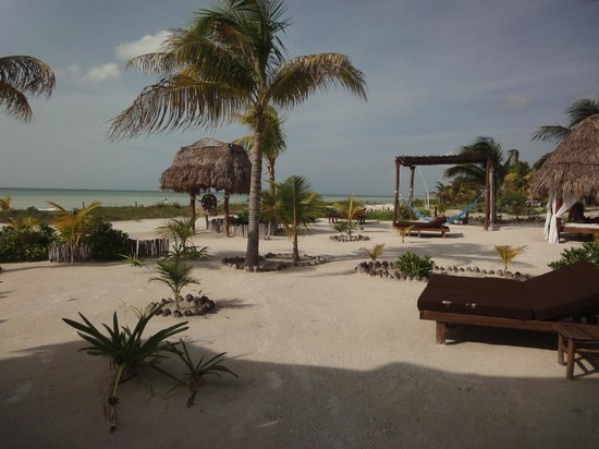 Hotel Casa Palapas del Sol : Beach front
