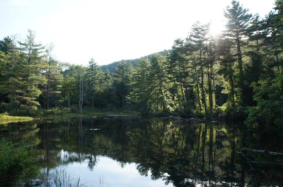 Pleasant Valley Sanctuary : Pike's pond