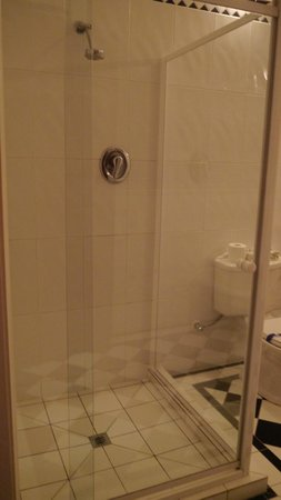 เวลเลสเลย์บูทิคโฮเต็ล: Large enclosed shower