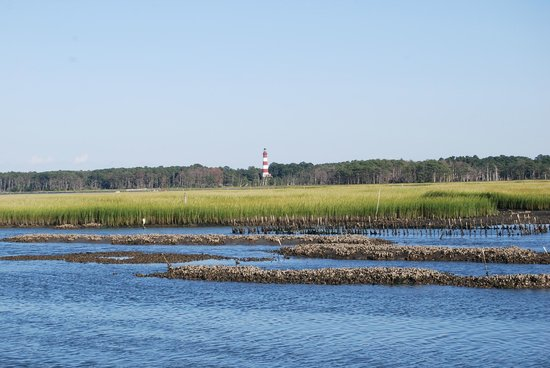 Snug Harbor Marina and Cottages: Lighthouse from the Dock