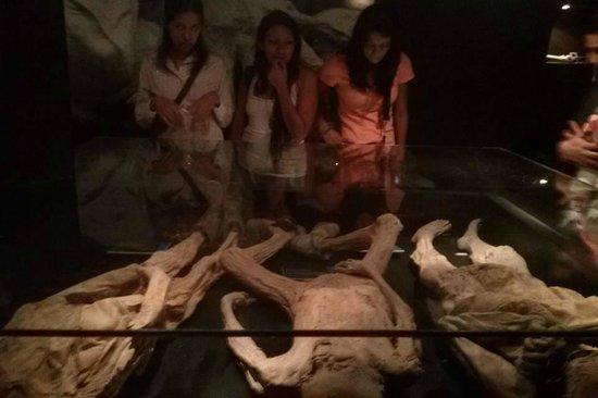 Museo de las Momias: Momias especiales.