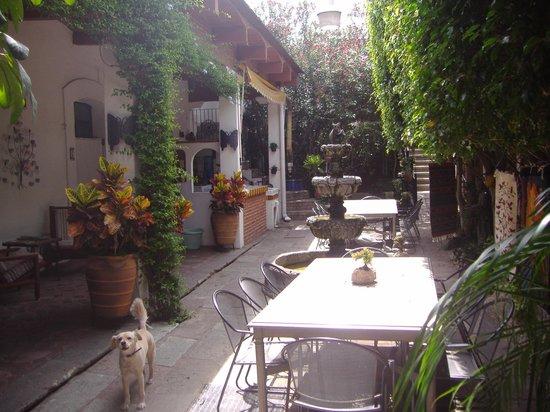 Hotel Las Mariposas: Detalles