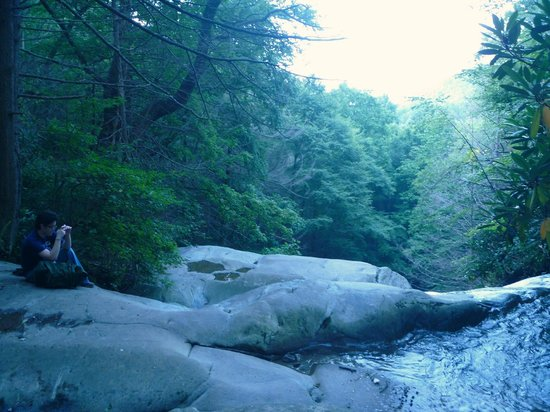 Glen Burney Trail: Beautiful trail