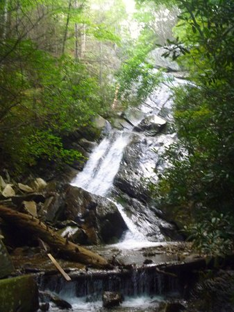 Glen Burney Trail : Your reward for making it to the bottom... but don't forget the real hike is just beginning!