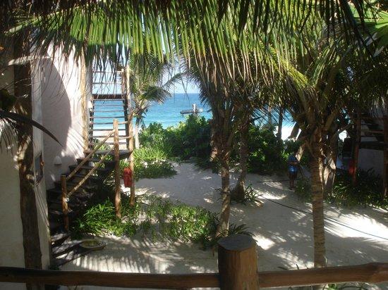 Encantada Tulum: vista desde la habitación
