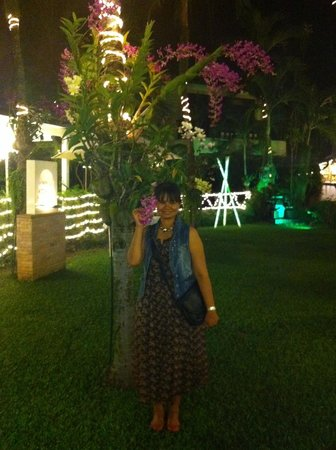 K-Hotel Restaurant and Beer Garden: The tropical garden