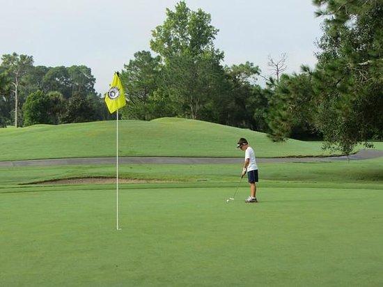 Disney S Oak Trail Golf Course Orlando Fl Address