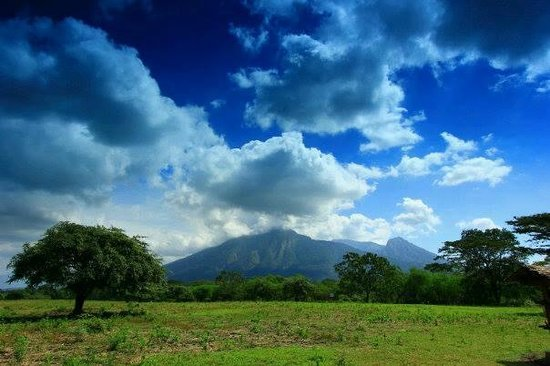 Situbondo, Indonesië: Mt Baluran seen from Savanna Bekol (pict by VINO)