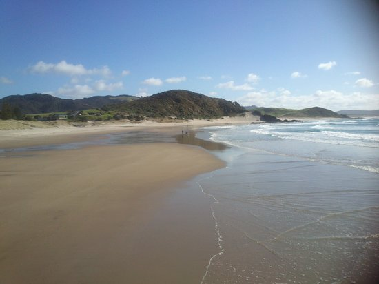 Empty Nest Bed and Breakfast: Ocean Beach, Whangarei