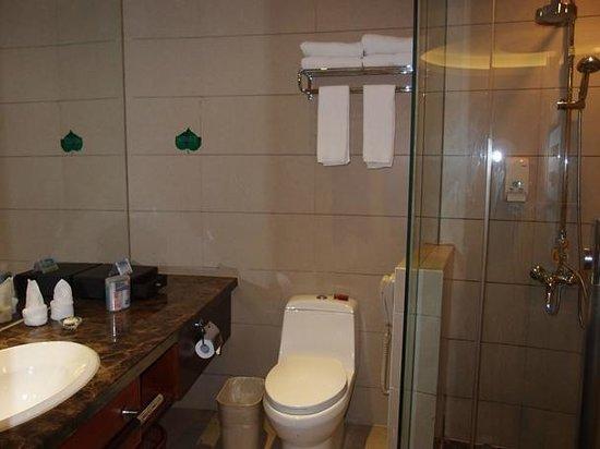 Vienna Hotel Changsha Shidai Dijing: トイレ