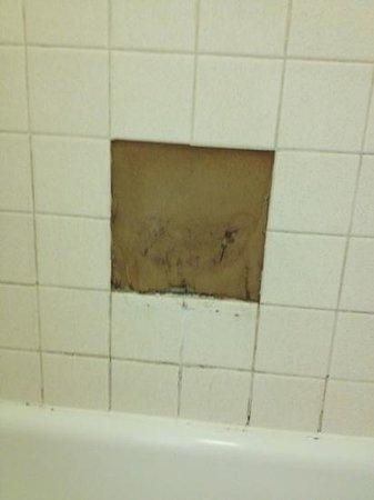 Baymont Inn & Suites Longview : missing tile