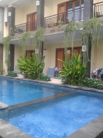 Waringin Homestay: pool side