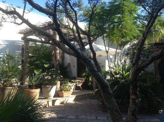 El Angel Azul Hacienda: giardino