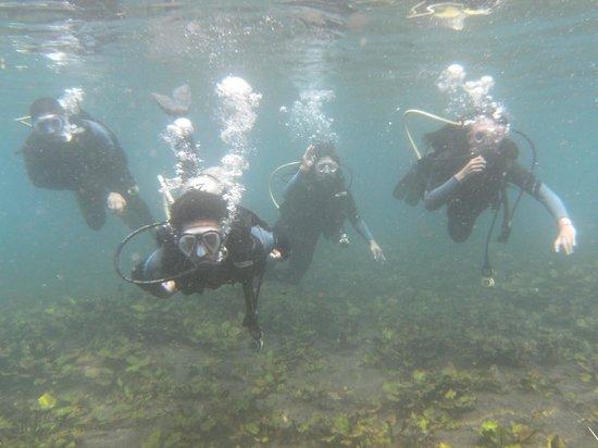 Media Luna School of Diving: PADRISIMO¡¡¡¡