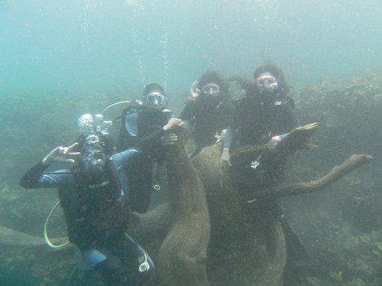 Media Luna School of Diving: MI AMIGA BRENDA NAVARRO HICIMOS UN GRAN EQUIPO¡¡