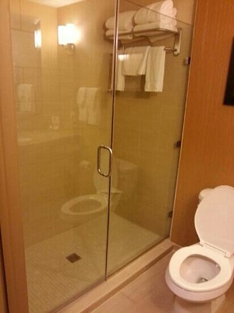 Hilton Garden Inn Shreveport Bossier City: Shower only (large)- No Tub