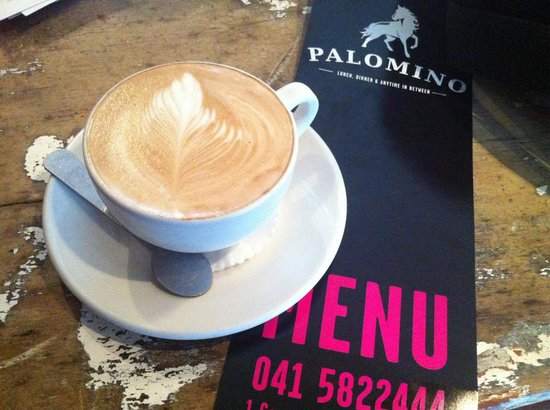 Palomino: Coffee break
