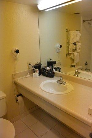 Best Western Palm Beach Lakes Inn: bathroom
