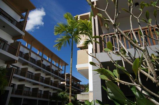 Deevana Plaza Krabi Aonang: пальмы в отеле