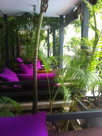 the 252 : Pool cabanas