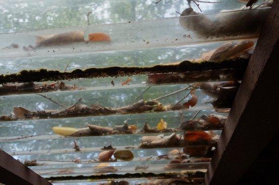 Nangyuan Island Dive Resort: Horrible Resort