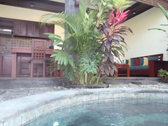 The Bali Dream Villa & Resort: View from pool of lounge/kitchen