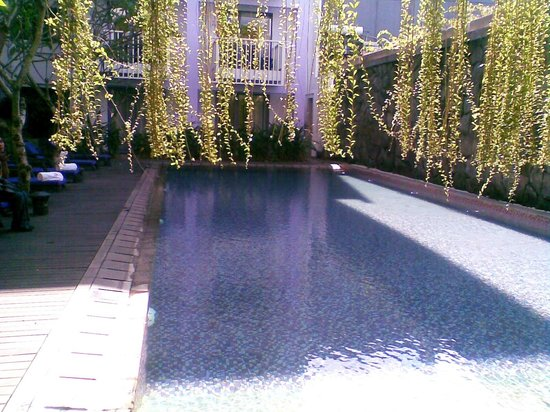 Berry Hotel: pool