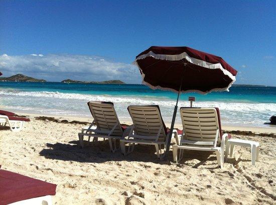 "Palm Court Hotel: strand vna het hotel aan ""st trpoze de carribean"""